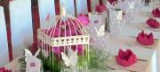 Thème Papillon et orchidée (Décoration d'un table unique, table dragée et cérémonie laïque).